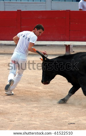 ARLES - JULY 9: Trainees of the school for Raseteur in Arles Florian Rado  fights against a Camargue-bull in the arena on July 09, 2010 in Arles, Bouche du Rhone, France - stock photo