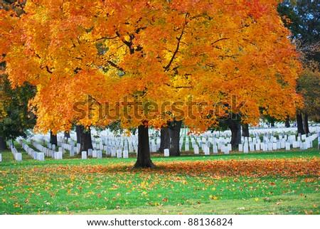 Arlington National Cemetery 9 - stock photo