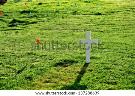 Arlington National Cemetery near to Washington DC, in Spring  - stock photo