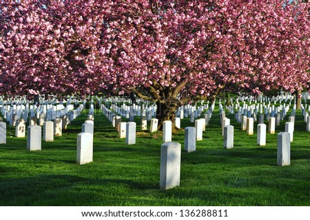 Arlington National Cemetery, Washington DC, USA - stock photo