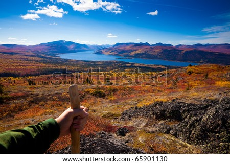 Arm, hand and wooden hiking stick hiker in tundra colored yellow and red by fall.