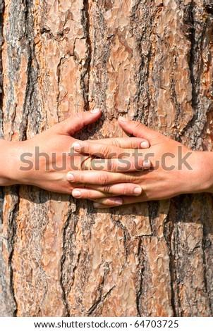 arms wrapped around a tree - stock photo