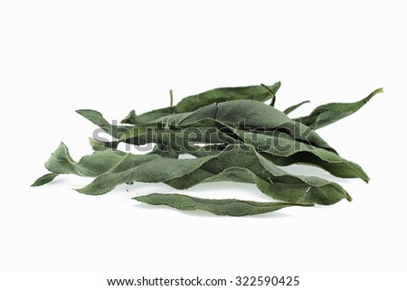 Arnica herb dried leaves on a white background - stock photo