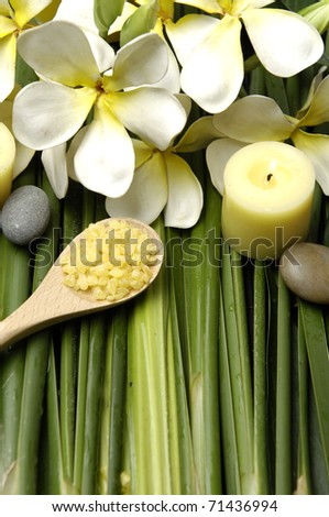 Aromatherapy and spa massage on bamboo grove and polished stones. - stock photo