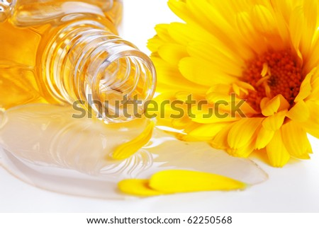 aromatherapy essential oil  with flower- Herbal medicine - stock photo