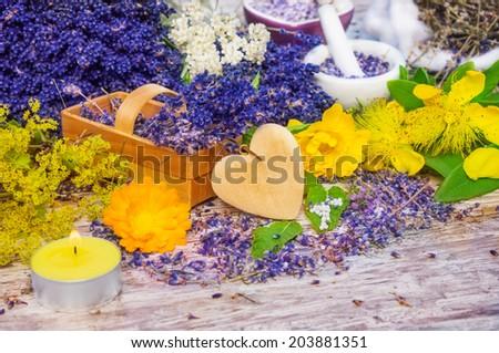Aromatherapy, Medicinal herbs - stock photo