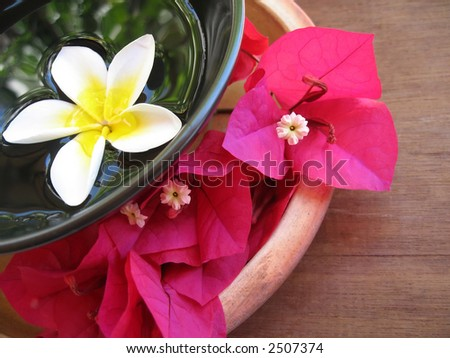 Aromatherapy treatment bowl with flowers and perfumed water. - stock photo