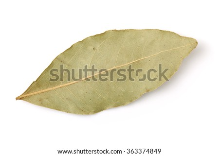 Aromatic bay leaves isolated on white background - stock photo