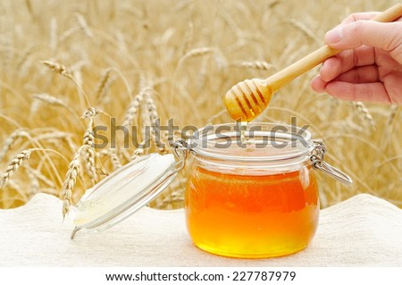 Aromatic, fragrant, fresh honey, poured in a glass the viscosity of honey with the help of hands and a special spoon  - stock photo