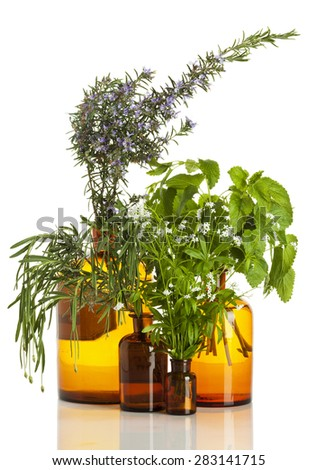 Aromatic herbs - Rosemary, lavender, woodruff and lemon balm - in old apothecary bottles isolated on white - stock photo