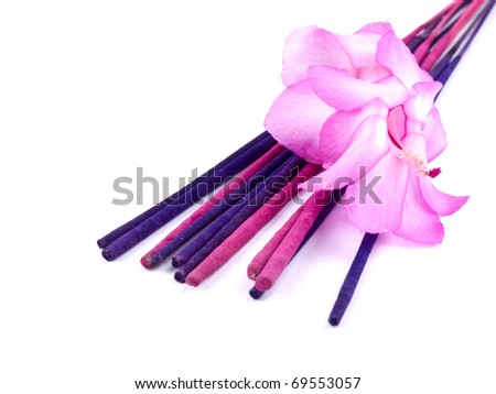 Aromatic purple incenses and pink christmas cactus flower on white background - stock photo