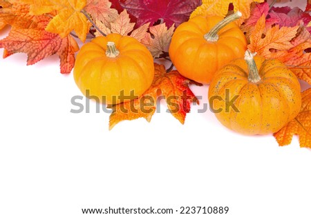 Arrangement of autumn pumpkins and leaves with copy space - stock photo