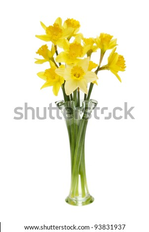 Arrangement of daffodil flowers in a fluted glass vase isolated against white