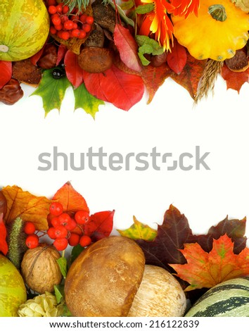 Arrangement of Frames with Various Autumn Leafs, Vegetables, Berries, Mushrooms, Flowers and Nuts isolated on white background - stock photo