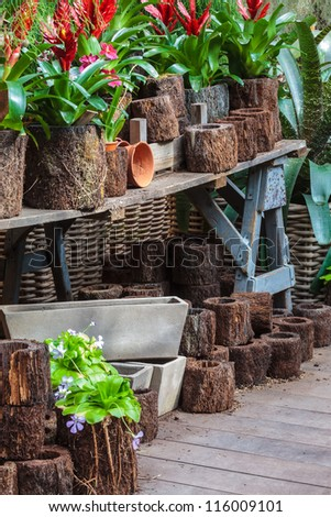 Arrangement of garden plants and tools in a greenhouse on a wooden table - stock photo