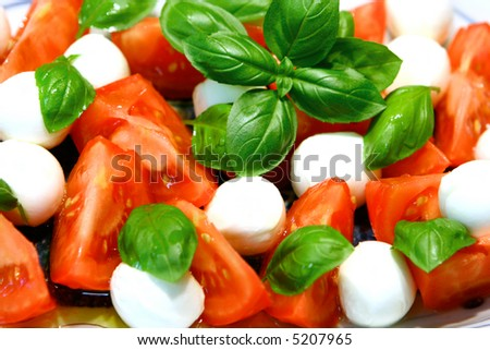 Arrangement of mozzarella and tomatoes with spring of basil and olive oil dressing.