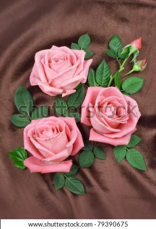 Arrangement of pink roses - stock photo
