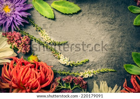 arrangement of red,white and blue flowers with leaves on dark background of slate, top view, toned - stock photo