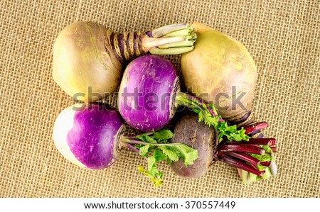 Arrangement of swedish turnip, purple turnips and beetroot vegetables - stock photo