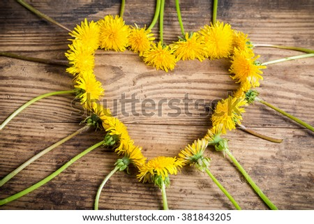 Arrangement of yellow dandelions in the heart shape on wooden background - stock photo