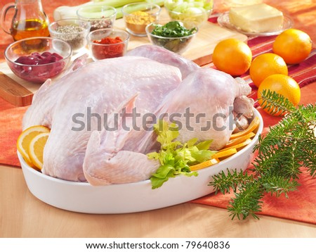 Arrangement with raw turkey in the bowl and spices - stock photo