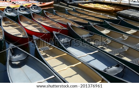 Array of Canoes and Kayaks