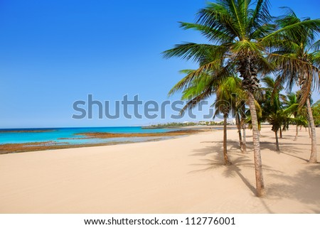 Arrecife Lanzarote Playa Reducto beach tropical palm trees at Canary Islands - stock photo