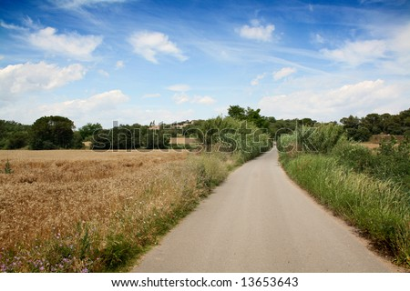 arriving home. a road and a landscape in summertime. wheat, clouds and a town near. - stock photo