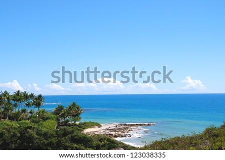 arround espelhio beach in bahia ,brasil - stock photo