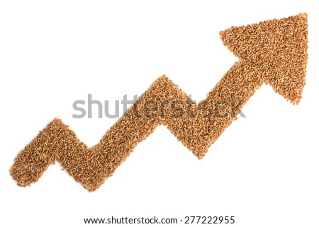 arrow from wheat seeds on a white background - stock photo