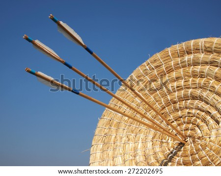 Arrow in the straw target - stock photo