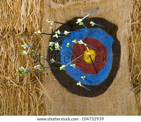 Arrows hitting a target painted on burlap - stock photo