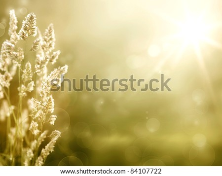 Art abstract autumn meadow background - stock photo