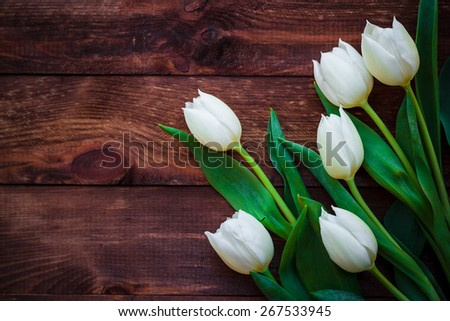 Art abstract background with spring tulips on wooden for design