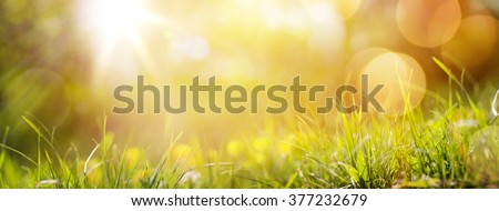 art abstract spring background or summer background with fresh grass - stock photo