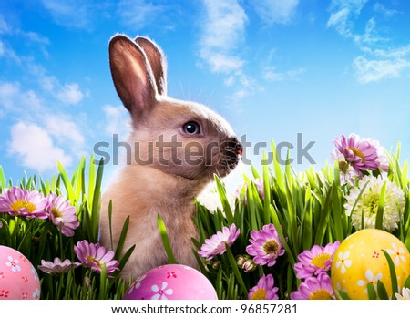 art baby Easter bunny on spring green grass - stock photo