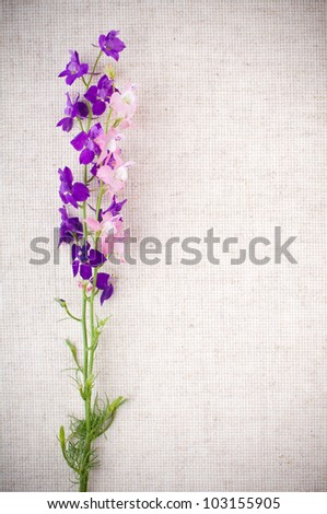 Art background with bright purple wild flowers on linen fabric - stock photo