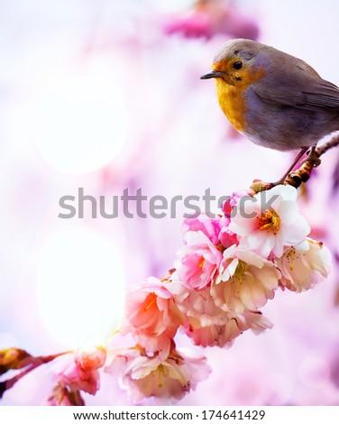 art beautiful spring morning nature background - stock photo