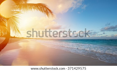 14c564767e Art Beautiful sunrise over the tropical beach