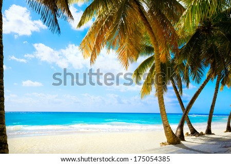 Art  beautiful untouched tropical sea beach - stock photo