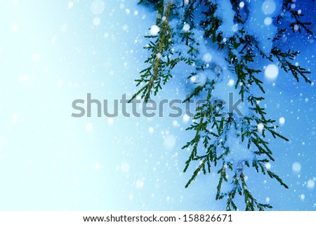art Christmas tree on snow  background - stock photo
