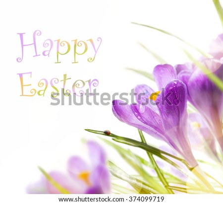 art easter background with spring flowers