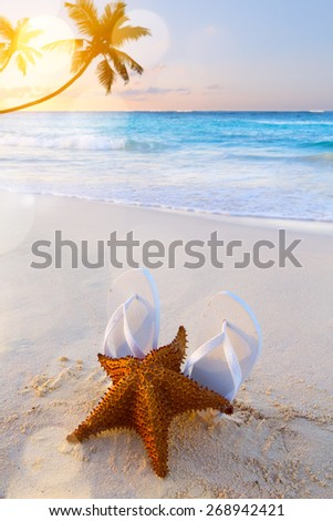 Art flip flops and starfish on a tropical beach background