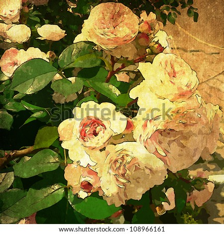 art floral vintage colorful background with vanilla roses in green leaves - stock photo