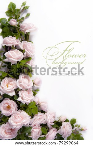 Art flower Background for greeting card - stock photo