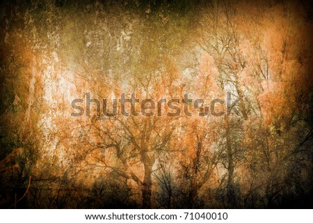 Art grunge background with forest trees. - stock photo