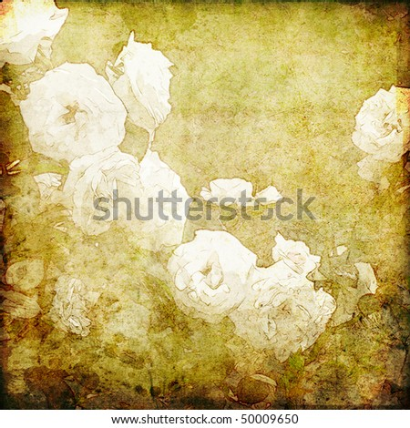art grunge floral vintage textured background with white roses on beige - stock photo