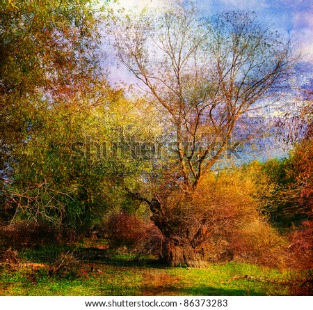 Art grunge landscape showing colorful wild forest on beautiful autumn day. - stock photo