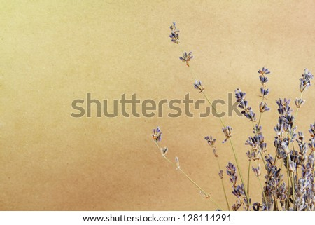 Art lavander background on a brown paper - stock photo