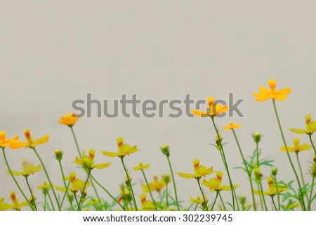 Art of little yellow flowers background.